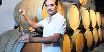 Maridaje perfecto: vinos y quesos de Lanzarote – Entrevista al enólogo Ignacio Valdera