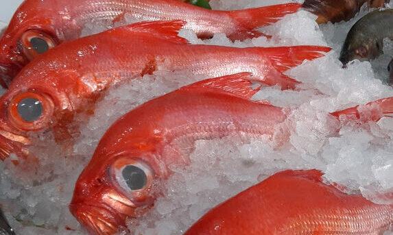 Fischladen Puerto del Carmen