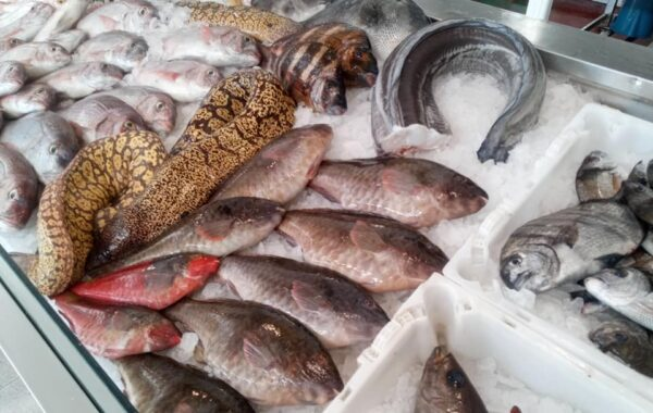 Pescadería Cofradía San Ginés