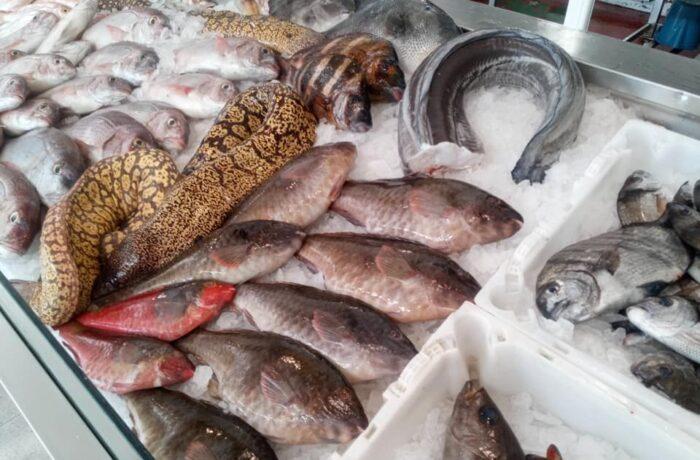 Fischladen Cofradía San Ginés