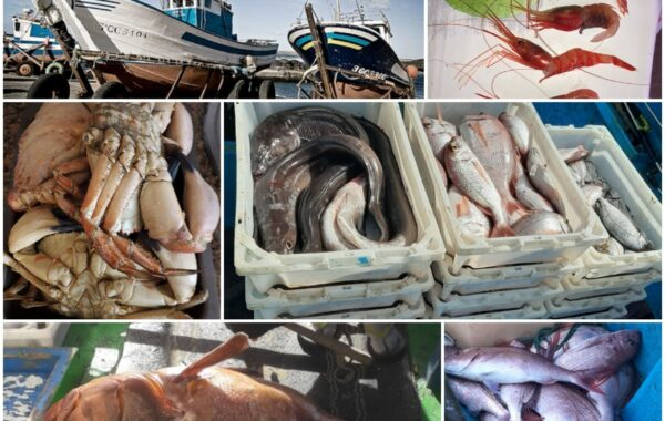 Fischerverband Piedra de La Salta